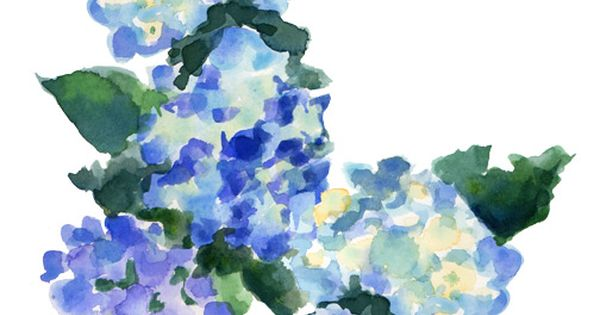 more watercolor flowers