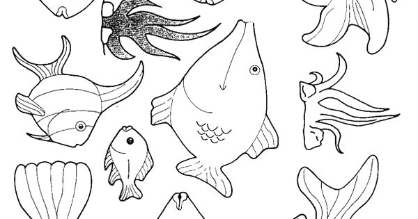 fish coloring pages google search for kids pinterest coloring dolphins and aquatic animal. Black Bedroom Furniture Sets. Home Design Ideas