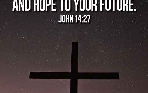 Quote based off John 14:27. This quote would make a wonderful tattoo!