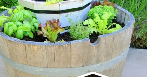 Tiered lettuce and herb garden