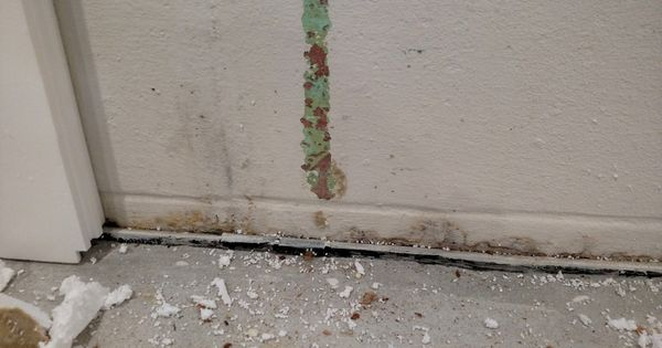how to prevent mold in basements basement remodeling ideas