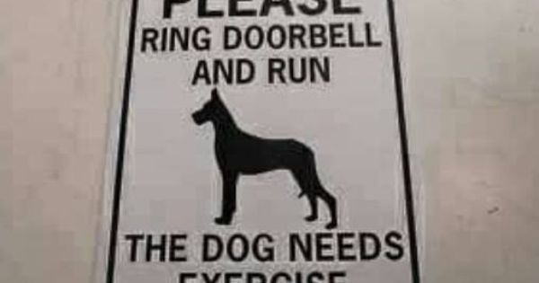 Need This For My House Doberman Doberman Dogs Dogs
