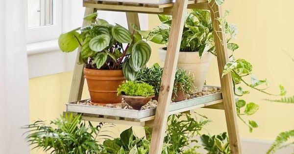 bricolage de jardin tag re porte plantes en vieil escabeau escabeau en bois escabeaux et en. Black Bedroom Furniture Sets. Home Design Ideas