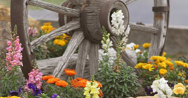 old wagon wheel, cute garden idea