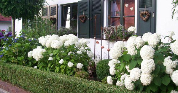 auch im vorgarten wohnen und garten foto garten pinterest garten. Black Bedroom Furniture Sets. Home Design Ideas