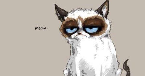 Pin By Deborah On Grumpy Cat Anime Cover Photo Facebook Cover Photos Cover Pics