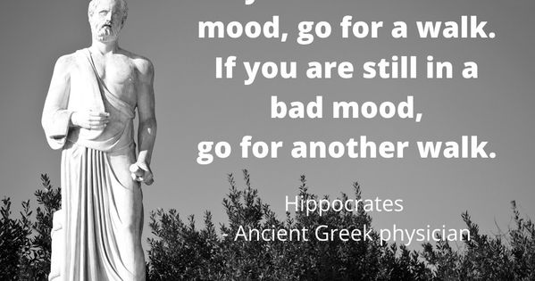 If You Are In A Bad Mood Go For A Walk If You Are Still In A Bad Mood Go For Another Walk Ancient Greek Quotes Greek Quotes Bad Mood Quotes