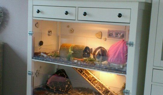 Beautiful home made guineapig cage the chest of drawers for Guinea pig dresser cage