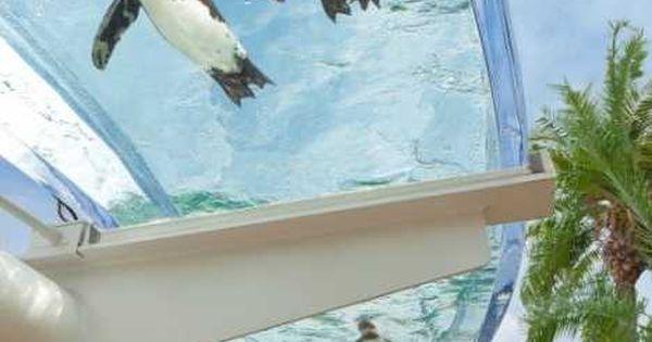 Aquarium, Public and Roof lantern on Pinterest