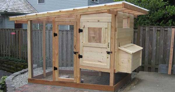 Building an Amazing Chicken Coop DIY Project | The Homestead Survival