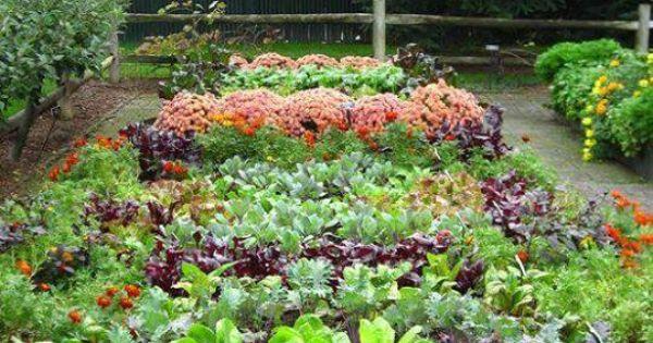 mandala Gardening Pinterest Gardens and Vegetable