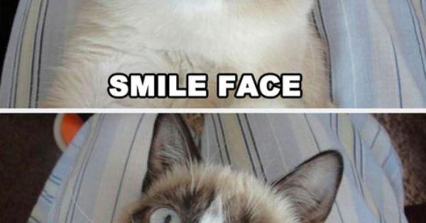Grumpy Cat Smiling