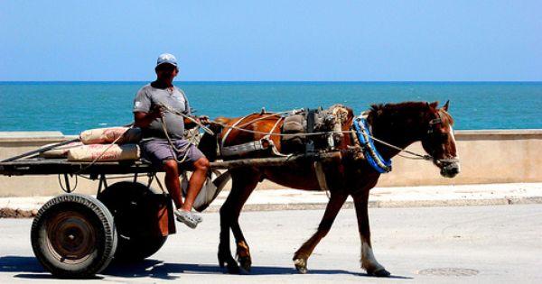 Out For A Cruise Cuba Cuba Cuba Tours Cuba Travel