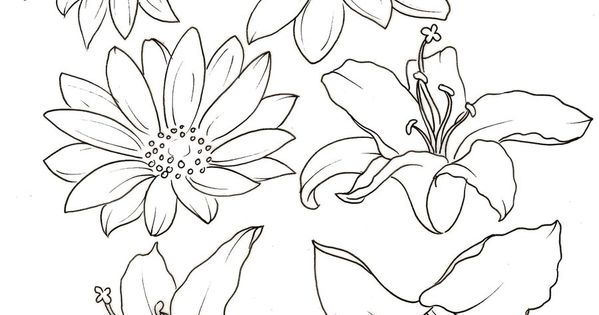 c61150a3b Lily and Daisy Tattoos by ~Metacharis on deviantART | Art at ...