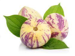 Melonenbirne Tipps Vom Anbau Bis Zur Ernte Melonenbirne Melonen Anbauen Melonen Pflanzen