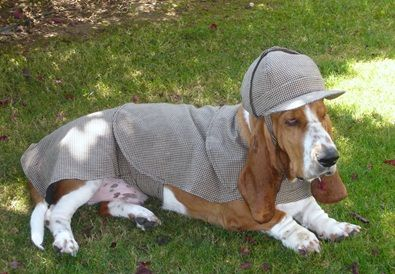 Dog Sherlock Holmes Costume Ezio S Next Costume Puppy Time