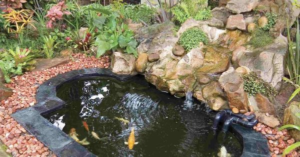 20 koi pond ideas to create a unique garden koi unique for Koi ponds for dummies