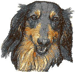 Dachshund Longhaired Advanced Embroidery Machine Embroidery