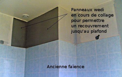 Comment Changer De Faience Sans Retirer L Ancienne Reussir Ses Travaux Salle De Bain Comment Renover Une Salle De Bain Style Western