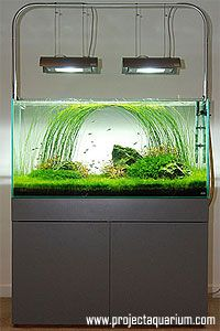 Planted Aquarium Tank Articles How To Build An Ada Style Aquarium Stand Project Aquarium Aquarium Stand Planted Aquarium Tropical Fish Tanks