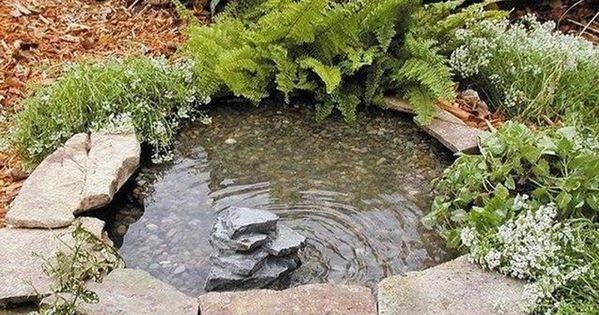 Haz tu propio estanque en el jard n gracia a una llanta for Estanque ecologico
