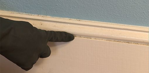 How To Clean Baseboards In 2 Easy Steps Baseboard Cleaner