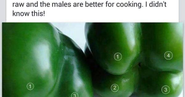 how to tell between male and female peppers