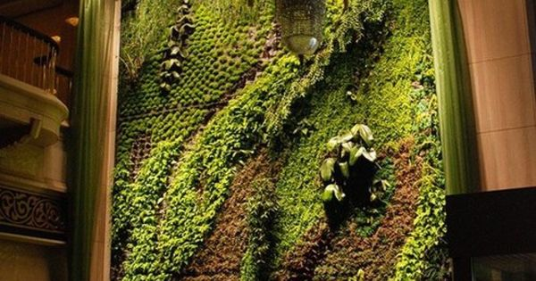 Living wall green roof pinterest paredes verdes for Jardines pequenos verdes
