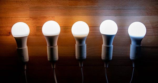 The Best Led Light Bulb Light Bulb Led Lights Led Light Bulb