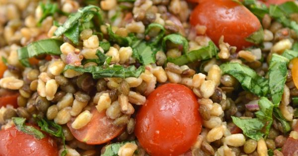 Farro salad, Lentils and Champagne vinaigrette on Pinterest
