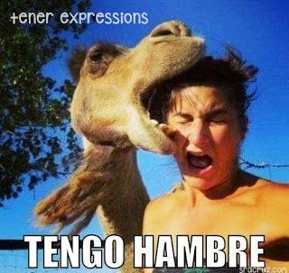 Senora Cruz Using Memes For Verb Tenses Funny Spanish Memes Spanish Memes Spanish Jokes