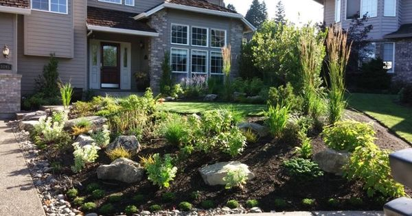 Love hearty native plants grasses we can help you for Hearty plants for outdoors