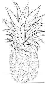 Pinas Para Colorear Buscar Con Google Drawings Pineapple Drawing Art Drawings