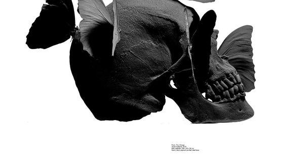 Black skull skull art