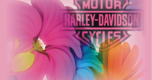 pink harley davidson logo wallpaper widescreen hd harley davidson logo svg harley davidson logo vector