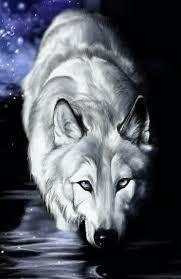 Loup Fond D Ecran Recherche Google Wolf Kunst Wolf Schilderij Wolf Behang
