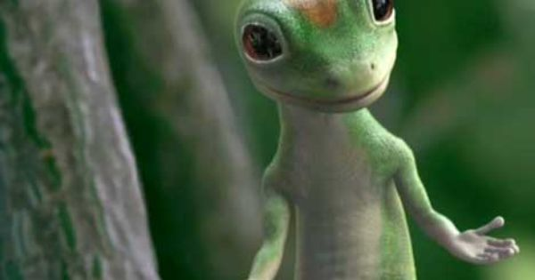 Geico Gecko Campaigns The Inspiration Room Funny Pictures