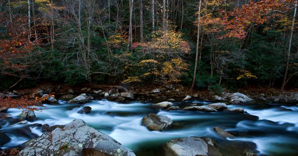 Great Smoky Mountains National Park, Tennessee: The little river flows through the