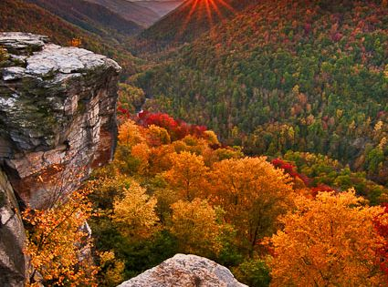 Lindy Point ~ Blackwater Falls State Park, West Virginia