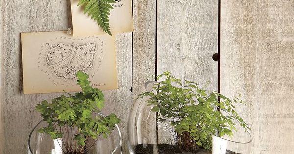 Decoration d int rieur id es 142 id es pour la maison for Plantes d interieur decoration