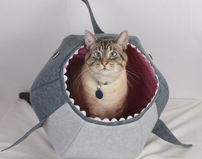 Handmade Cat Bed Ideas - DIY Pet Furniture - Good Housekeeping