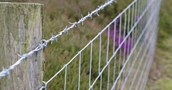 6 Options For Farm Fences Photo Courtesy Istockphoto