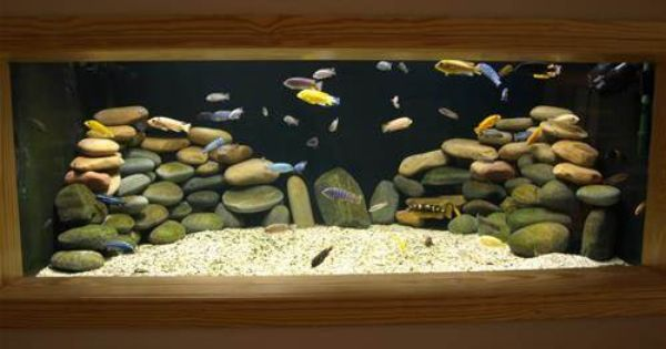 Large Aquarium Stones : Black background white sand round river rock fish tank