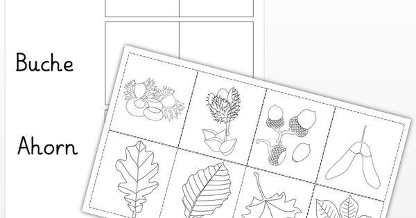 arbeitsblatt laubb ume png pixel sachunterricht pinterest schule grundschulen. Black Bedroom Furniture Sets. Home Design Ideas