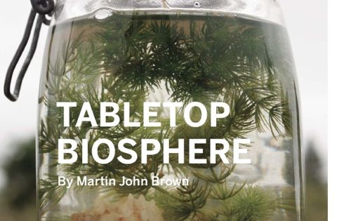 Science project perhaps? DIY Tabletop Biosphere... Love this!!