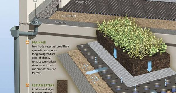 How Green Roofs Work Click Image To Enlarge Amp Visit The