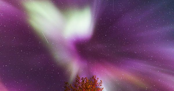 ~~northern lights | Purple, pink and green aurora borealis ...
