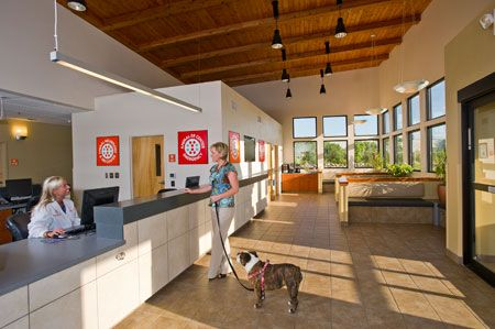 A Veterinary Hospital Designed For And By The Practice Team Hospital Design Waiting Room Design Hvac Design