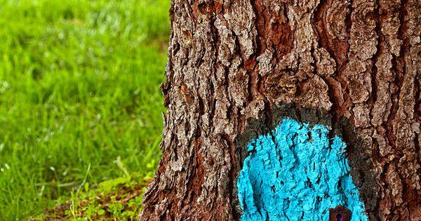 Cute tree art
