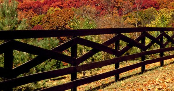 Black Post Fence In Fall Sets Boundary For Horse Farm